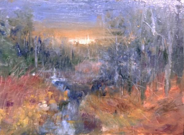 Back Stream Winter by Tom Bailey