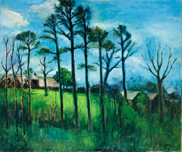 Looking Toward the Rushton's Back Yard on Canterbury Road by Miriam McClung