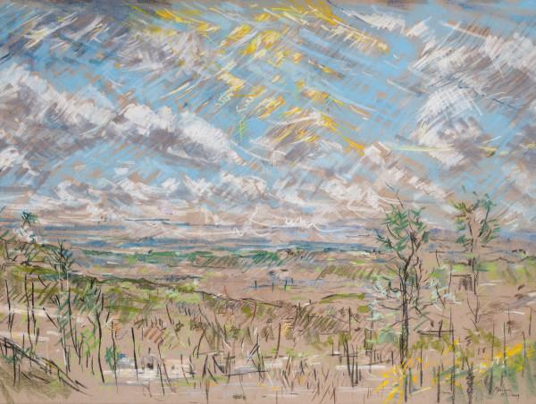 View from Briarwood Presbyterian Church by Miriam McClung