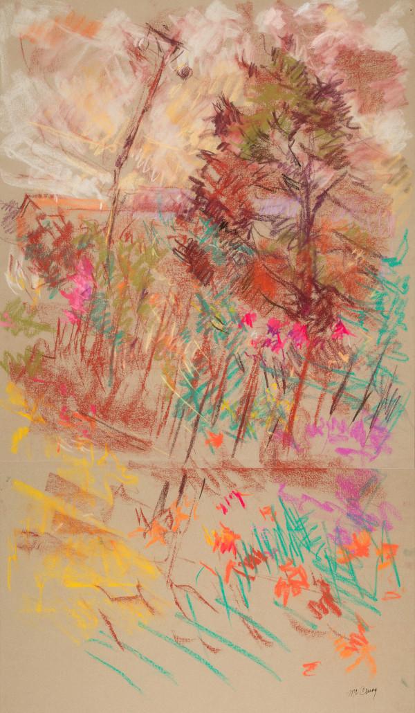 David's Garden (Bottom Half) by Miriam McClung