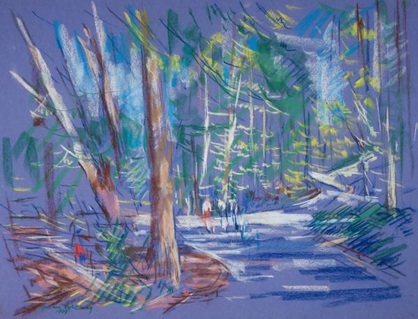 Walking on the Mountain Brook Parkway, Birmingham, Alabama by Miriam McClung