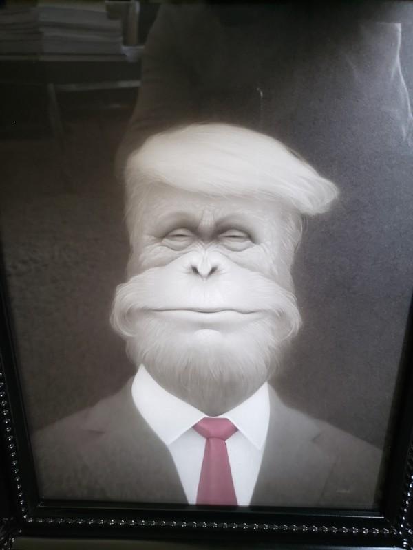 """Orangutang Trump""  by Travis Louie"