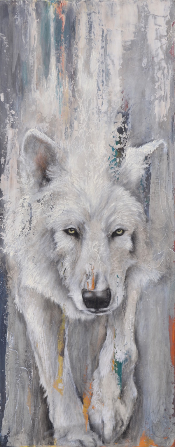 Arctic Wolf by Tabitha Benedict
