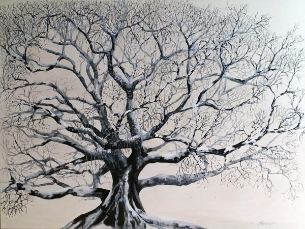 Winter by Kit Hoisington
