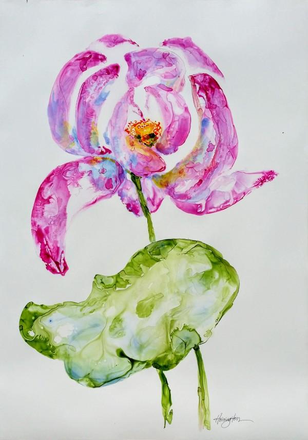 Big Lotus by Kit Hoisington