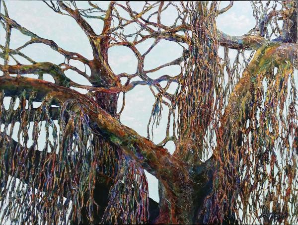 Balmoral Banyan by Kit Hoisington