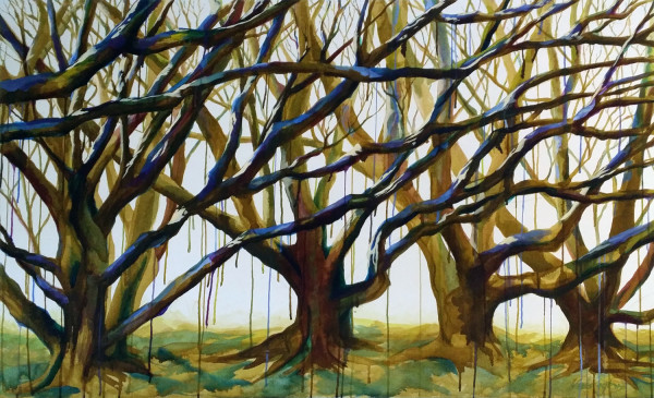 Colour Tangle by Kit Hoisington