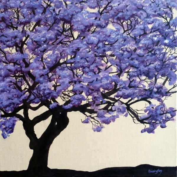Jacaranda by Kit Hoisington
