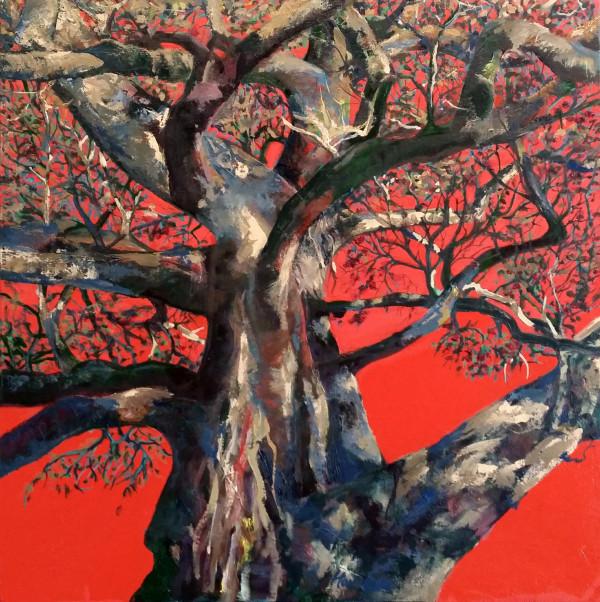 Red Sky Tree, AGNSW by Kit Hoisington