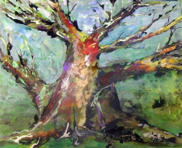 Coral Tree, Old but Alive by Kit Hoisington