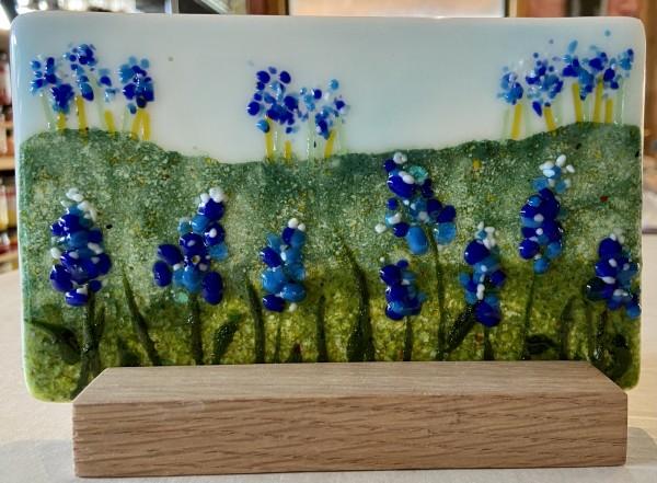 Bluebonnet Field II by Cindy Cherrington
