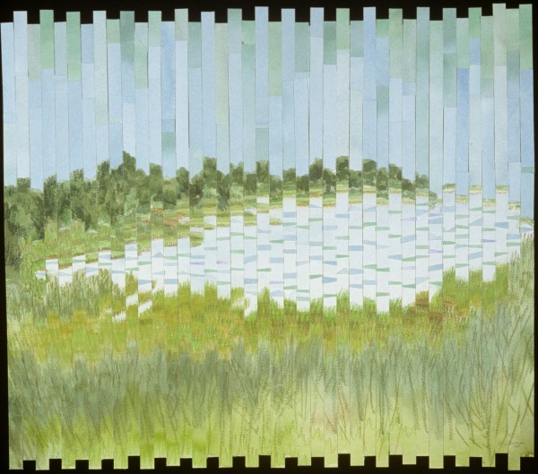 Wetlands with Ripples by alice brickner