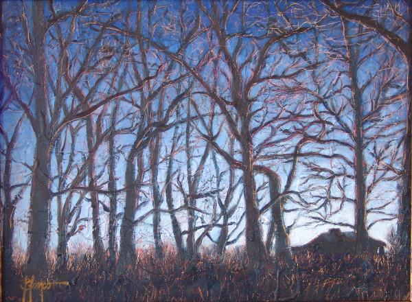 Winter Sunrise, Doylestown, Pennsylvania by Jeannina Blanco