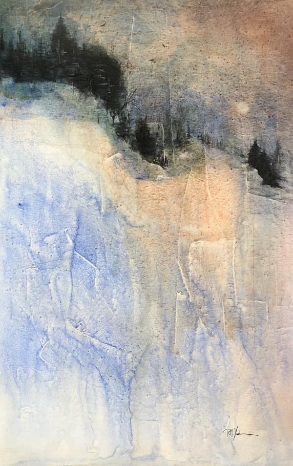 Snow Bowl by Robert Yonke