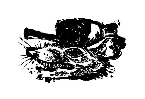 Possum by Jenn Rodriguez