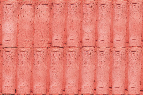 Collection of roof tiles | Coleção de telhas by Josely Carvalho