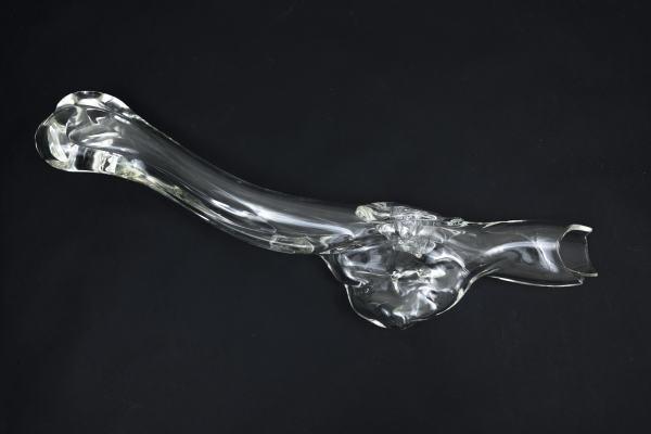 Bone 02 by Josely Carvalho