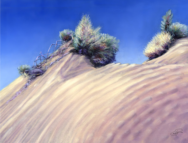 Perched on Dune Summit by Pat Cross