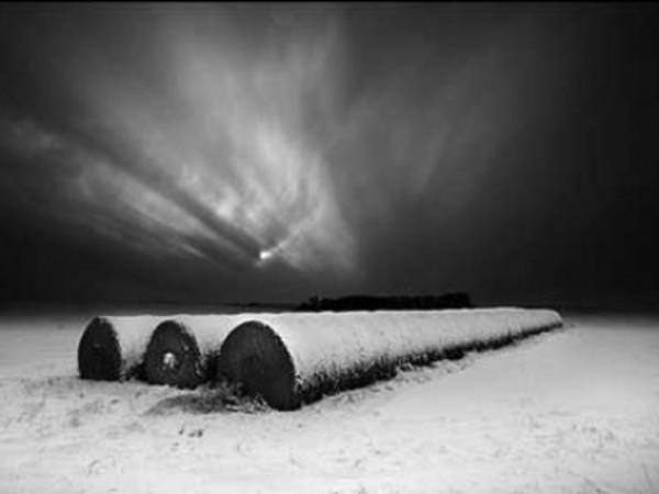 Winter Moonrise by Daniel Coburn
