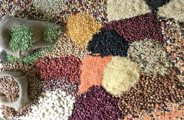 Rice and Beans by Funmi Fayomi-Holmes
