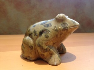 Hidden Animals- Stone Frog