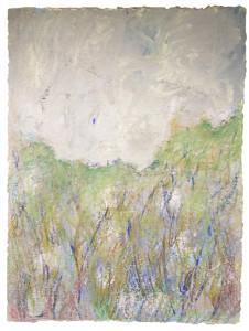 Field in a Dream