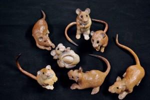 Salt Marsh Mice Vignette