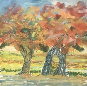 390 - Fall Under the Trees - Crater View Ranch