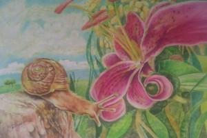 Snails journey