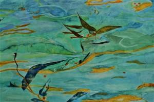 Blue Bay and Kelp