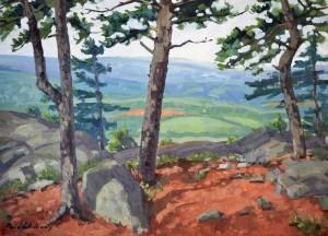Piedmont Overlook