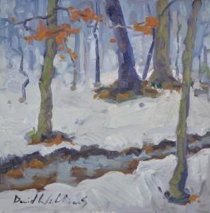 Alphen Wood
