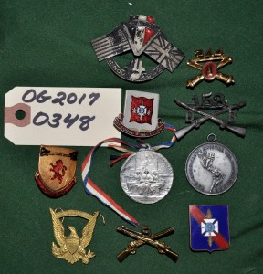 Various 9th Regiment Pins