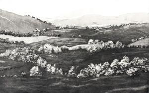 jones hill
