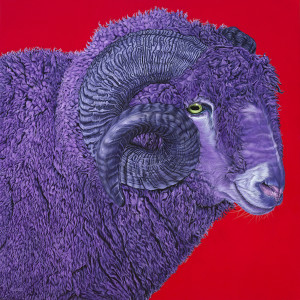 RAM ON RED, 2015