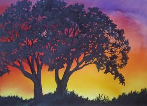 Sunset Lace VI