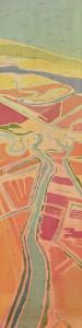 Santee Rice Field