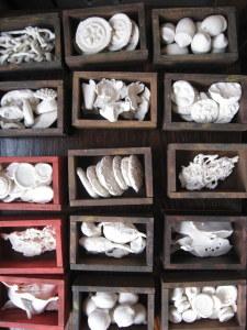 Cataloguing Chaos Series . 030