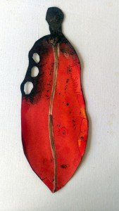 Pohutukawa Leaf 064