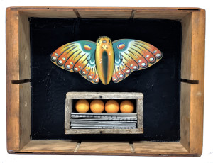 Butterfly Box #6