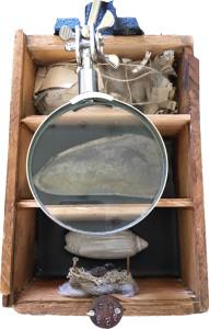 Charleston Box 35
