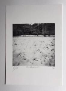 Hijkerveld in de sneeuw (5291389650583)