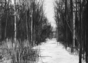 Suspension (deep woods) II