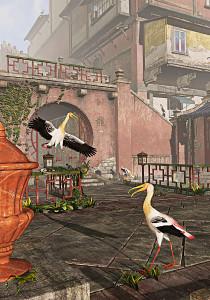 Morning Storks