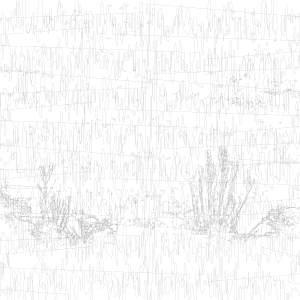 Radio Waves in the HartRAO Landscape