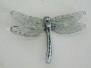 Dragonfly, Large-Black & White, Irid wings