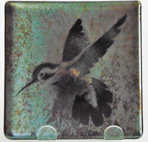Plate-Hummingbird on Black Irid