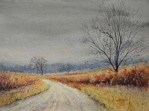 Parklands in Winter