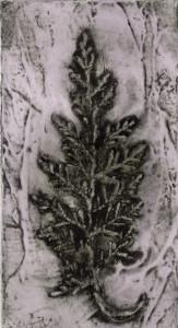 Cypress 3, 5/10