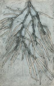 Western Australian Peppermint Tree 2 EV1/7, © Jacky Lowry 2018, Collagraph print on paper